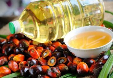 India with little choice could soon return to Malaysia for palm oil